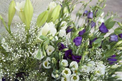 felicitaciones de boda,deseos de casamiento,felicitaciones por bodas,bonitas felicitaciones por bodas
