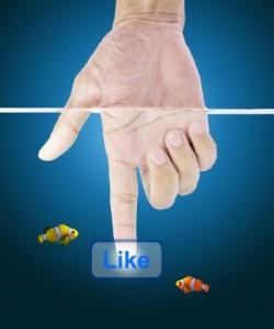 reflexiones sobre la vida para facebook, reflexiones para el alma, frases para el alma, reflexiones para el alma para facebook, frases para el alma para facebook, reflexiones para el alma para mi muro de facebook
