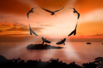 Bonitos Mensajes De Buenos Días Para Mi Amor | Frases De Buenos Días