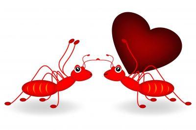 Cartas de amor para dedicar en el aniversario. Cartas de