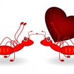 palabras de amor para mi novia,textos bonitos de amor para mi novia,buscar bonitas palabras de amor para mi enamorada,descargar frases de amor para mi enamorada,textos bonitos de amor para mi novia