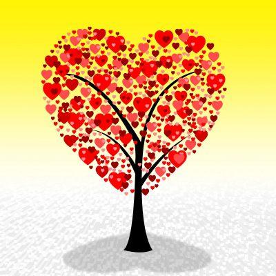 Bellas Palabras De San Valentin Para Mi Esposa