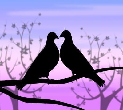 Bajar Mensajes De Amor Para Facebook│Nuevas Frases De Amor Para Facebook