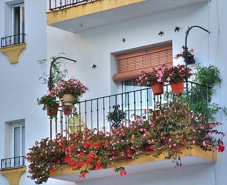trabajar en España consejos,reclutamiento para trabajar en España