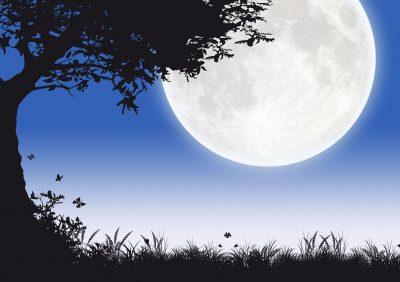 Mensajes de buenas noches, mensajes de texto de buenas noches, palabras de buenas noches, pensamientos de buenas noches