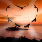 palabras de buenos dias para mi amor,saludos de buenos dias para mi amor,sms de buenos dias para mi amor