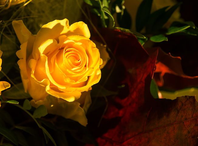 Imagenes bonitas de buenas noches bonitas
