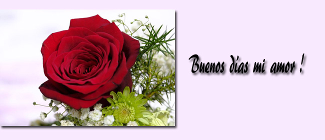 Bonitas Mensajes De Buenos Dias Mi Amor Frases De Buenos Dias