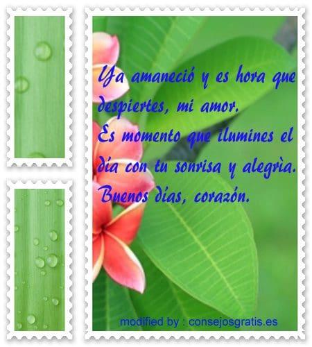 Bonitas Mensajes De Buenos Dias Mi Amor Frases De Buenos