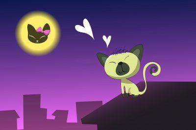 descargar mensajes de buenas noches para mi amada, nuevas palabras de buenas noches para mi amada