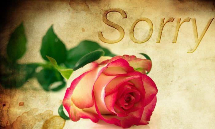 Enviar Mensajes De Disculpas Para Mi Noviofrases De Amor Y