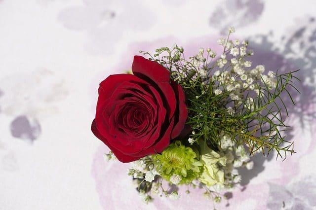 las mejores palabras por el Día de la Madre para tu prima, bonitas frases por el Día de la Madre para mi prima